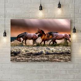 """Картина на холсте """"Трио лошадей"""""""