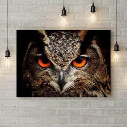 "Картина на холсте ""Гипнотический взгляд совы"""